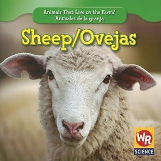 Sheep/Ovejas