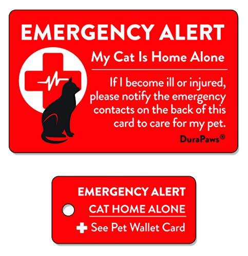 DuraPaws Visitenkarte und Schlüsselanhänger, Aufschrift Pet Dogs & Cats Are Home Alone, Kunststoff, beschriftbare Oberfläche auf der Rückseite der Karte
