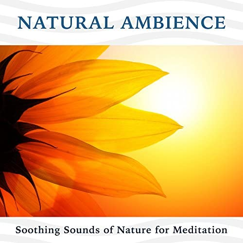 Qi Gong Academy & Nature Sounds Nature Music & Peaceful Music