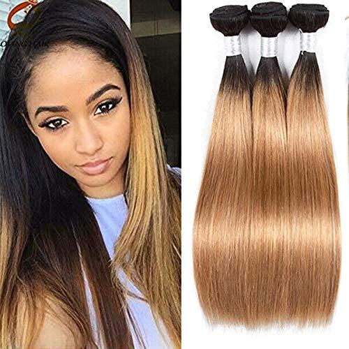 Blonde 27 Human Hair Bundles Ombre Straight Bundles Cheap Dark Roots And Honey Blonde 2 Tone Bundles For Women Wet And Wavy Hair Extensions Weave 1B/27 Bundles 14 16 18 Inch