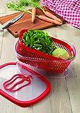 Snips 021485 Salva Aroma Verdura-Contenitore salvafreschezza da 4 lt, Rosso