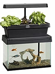 Huamuyu Hydroponic Garden Aquaponic Fish Tank Plants Growing System Self-Cleaning Seed Sprouter Tray