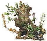 Marina 12064 Ornamento Deco Wood con Plantas, XXL