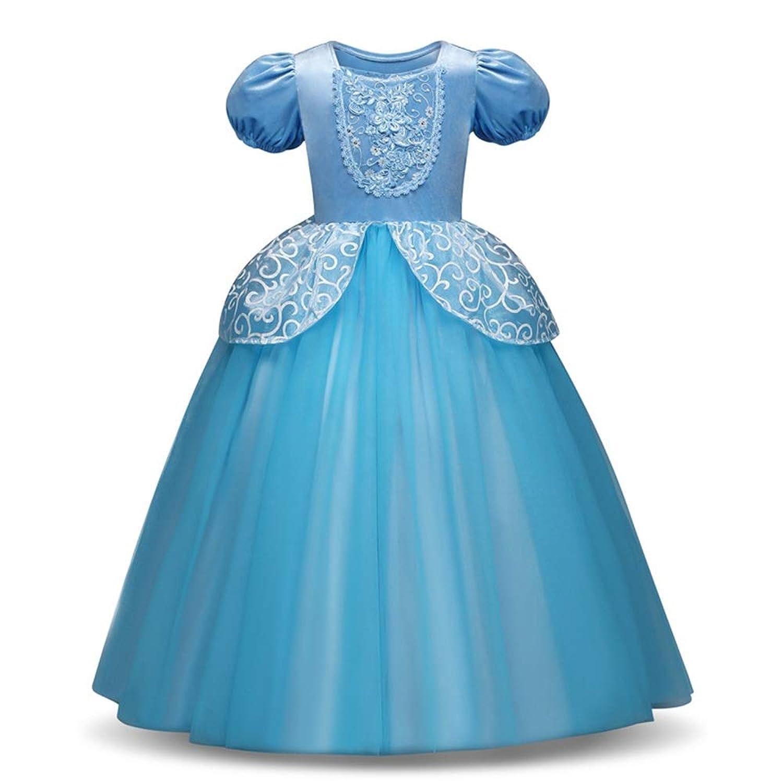 子供の女の子のドレス ラブリーファンシージュニアフラワーガールドレスノースリーブフローラルローズチュールプリンセスドレス女の子チュチュボウワンピース結婚式誕生日パーティー 女の子のパーティーウェディングブライドメイドの王女のドレス (色 : 青, サイズ : 120cm)