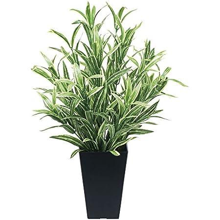 光触媒 人工観葉植物 光の楽園 ツートンスパイダー 519A70
