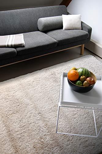 Tappeto moderno Delight beige 120x170cm - tappeto esclusivo morbido e serico