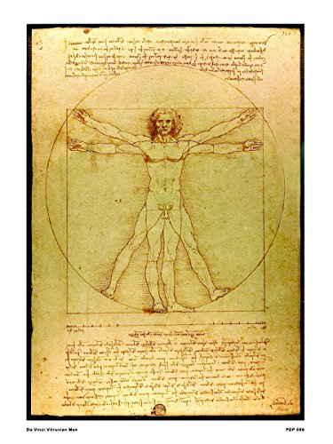 onthewall Da Vinci L 'Uomo Vitruviano 30x 40cm Kunstdruck Poster