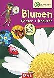 Blumen, Gräser & Kräuter (Naturdetektive / Wissen und Beschäftigung für kleine Naturforscher ab 6 Jahren)
