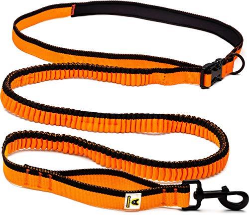Hundefreund Laufleine - Besonders leichte Dehnbare Hundeleine für mittlere und große Hunde zum freihändigen Laufen | Fotografieren | Kinderwagen schieben | Wandern