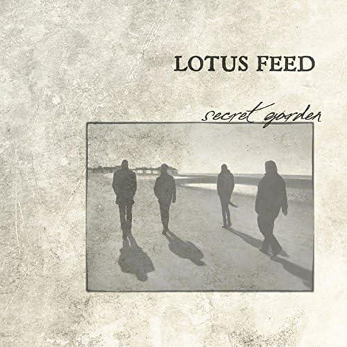 Lotus Feed