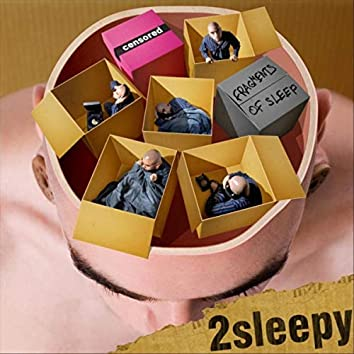 Fragments of Sleep