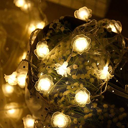 Dpliu-JJ String Light Luci Decorative Indoor/Outdoor Luce Natalizia LED Rosa luci Decorative, Batteria Flashing Lights for la Festa di Compleanno di Natale casa di Cerimonia Nuziale Tabella
