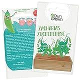 Zuckererbsen Samen: Premium Zucker Erbsen Samen für...