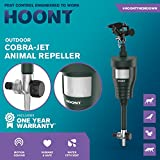 Hoont Cobra Powerful Outdoor Water Jet Blaster Animal Pest Repeller, Motion Activated, Expels Cats, Dogs, Squirrels, Birds, Deer, Etc. Out of Your Property (Upgraded Version)