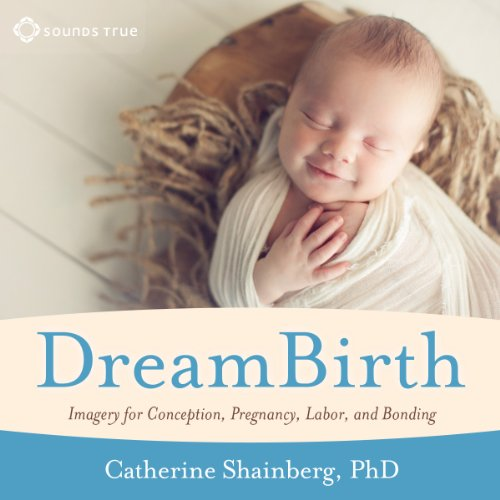DreamBirth: Imagery for Conception, Pregnancy, Labor, and Bonding audiobook cover art