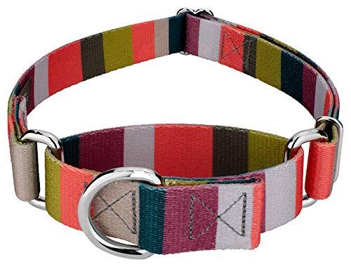 Stripe Martingale Dog Collar - 6