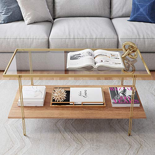 Nathan James Asher Mid-Century Rectangle Coffee Table Glass Top and Rustic Oak Storage Shelf with Sleek Brass Metal Legs, Gold