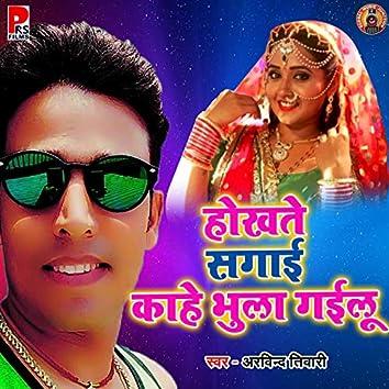 Hokhte Sagai Kahe Bhula Gailu - Single