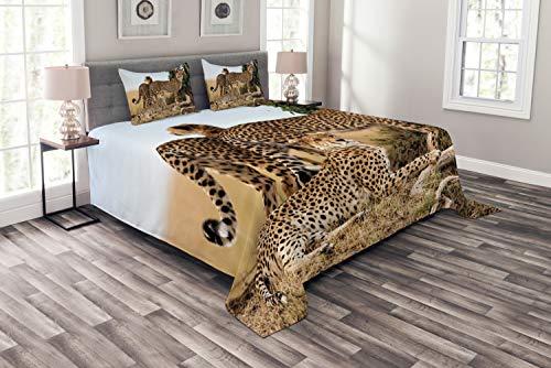 ABAKUHAUS Afrika Tagesdecke Set, Safari-Tier Cheetahs, Set mit Kissenbezügen Romantischer Stil, für Doppelbetten 220 x 220 cm, Schwarz Tan