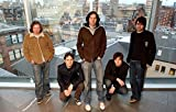 Snow Patrol - At the Lighthouse in Glasgow Poster 61x91.5cm