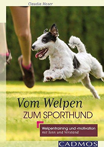 Vom Welpen zum Sporthund: Welpentraining und -motivation mit Sinn und Verstand