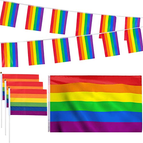 Whaline 12 Pack Gay Pride Rainbow Flag Set, 3x5ft Large Flag, 16.4ft Rainbow Banners Bunting Flags and 10 Pieces Small Hand Flag with Sticks for Gay Pride Day, Pride Festival Carnival Party Parade