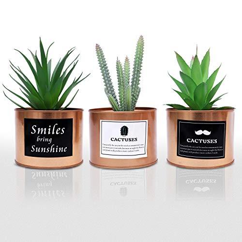Kunstpflanzen (3 Stk) - (10 x 18 cm) Mini Plastik Sukkulenten künstlich Künstliche Kaktus Pflanzen Grün in Goldenem Metall Topf - Wohnaccessoire Deko für Wohnzimmer, Küche, Regal, Büro, Balkon