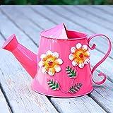 Pequeña regadera Hogar de riego del Color de la Lata Poder de riego, riego de impresión Can Vendimia, Flor de riego Pulverización Regadera (Rojo, 3L) Regadera para Plantas