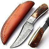 Cuchillo hecho a mano a medida, cuchillo de hoja de acero de Damasco con funda de piel, cuchillo artesanal, cuchillo de cocinero, cuchillo de bolsillo, cuchillo forjado a mano, cuchillo de cocina 9396