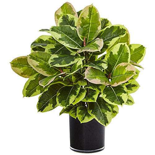 Nearly Natural Rubber Glossy Cylinder (Real Touch) Artificial Plant, Green