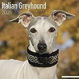 Italian Greyhound Calendar 202...