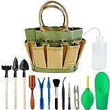Good Gain Kit per succulente da giardino con borsa per organizzatore, mini set di attrezzi da giardinaggio per interni a mano, 13 pezzi di attrezzi per fioriere in miniatura per piante da fata