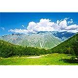 Qinunipoto 2.1m x 1.5m背景布 撮影 スタジオ撮影用背景布 专业级摄影 背景ボード 自然の風景 青い空と白い雲 連続した森林 山 屋外の風景 子供の写真 おもしろい プロの写真 透けない 無反射