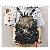 El Nuevo Huafeng Simple Suave Cuero de la PU Backpackage Gran Capacidad Mensajero de Las señoras Bolso de los Bolsos (Negro) (Color : Black)