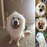 shulan Lions Mane for Large Dog Halloween Costumes, Pet White Wig with Ears