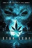Star Leaf - Clean