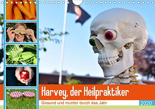 Harvey, der Heilpraktiker (Wandkalender 2020 DIN A4 quer)