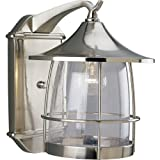 Progress Lighting P5764-09 1-Light Wall Lantern with Wire Frames and Clear Seeded Glass, Brushed Nickel