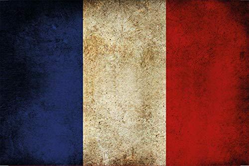 Schatzmix Land Fahne Frankreich National Flagge Metallschild Wanddeko 20x30 cm tin Sign Blechschild, Blech, Mehrfarbig