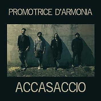 Promotrice D'Armonia