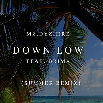 Down Low (Summer Remix)