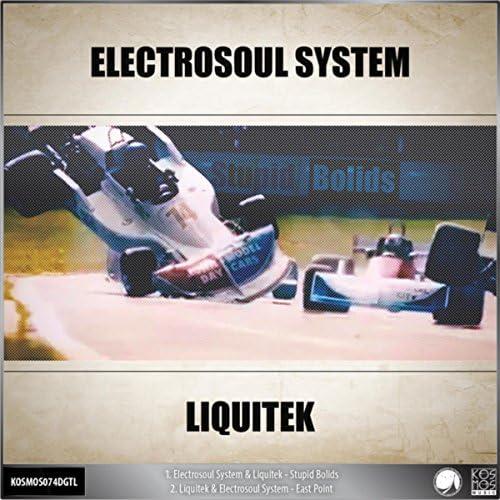 Electrosoul System & Liquitek