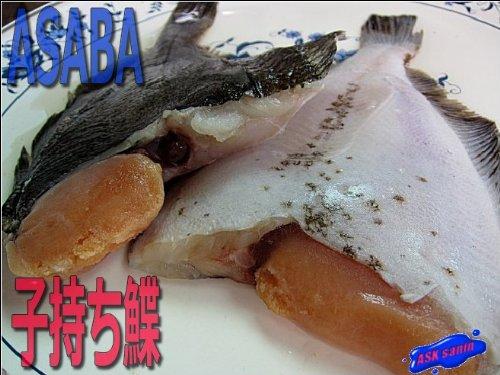磯の高級魚「子持ちカレイ-5kg」浅葉鰈12尾、煮付け最高!!