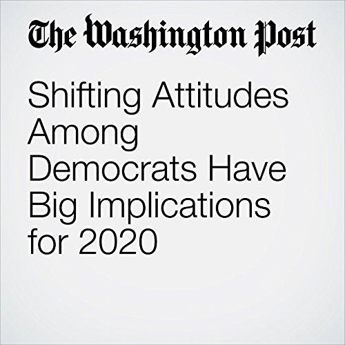 Shifting Attitudes Among Democrats Have Implications for 2020 copertina