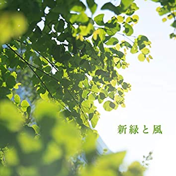 New green leaves and Blowing winds