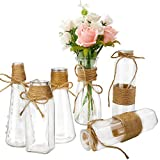 Habbi Glass Vases Set of 6, Clear Glass Flower Vase with Rope Design for Home Decration