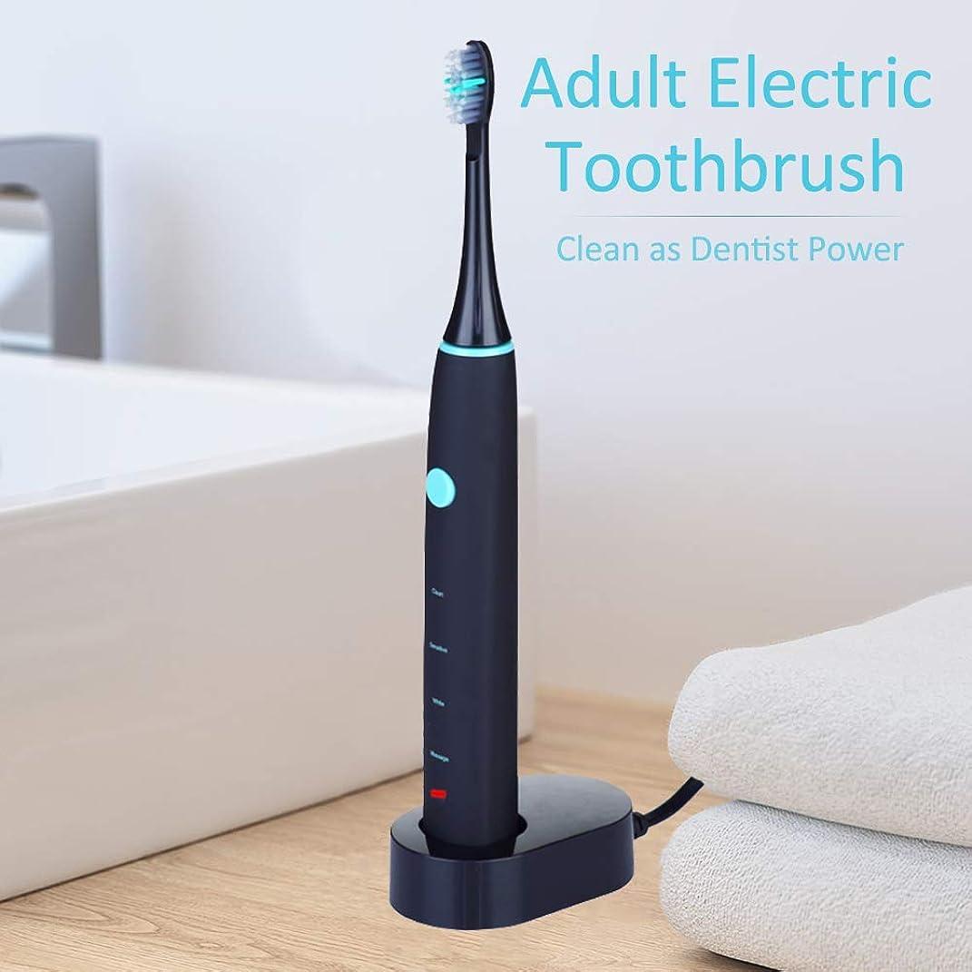 麻痺させる抜本的な法令Rakuby 家 旅行使用 2つブラシ 頭部付き 歯科医力 再充電 可能 防水 きれい 大人 電動歯ブラシ
