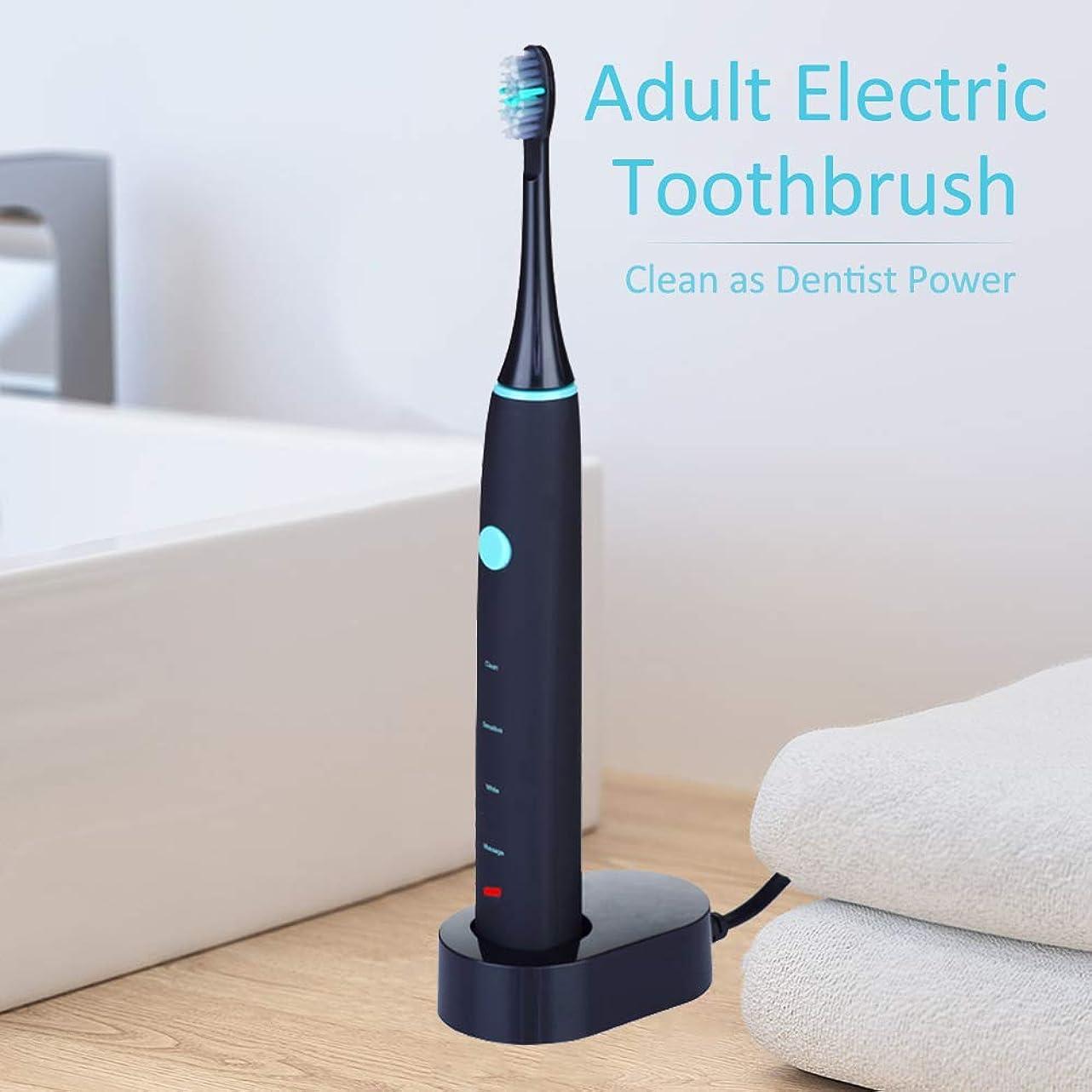 会員より平らなリングレットRakuby 家 旅行使用 2つブラシ 頭部付き 歯科医力 再充電 可能 防水 きれい 大人 電動歯ブラシ