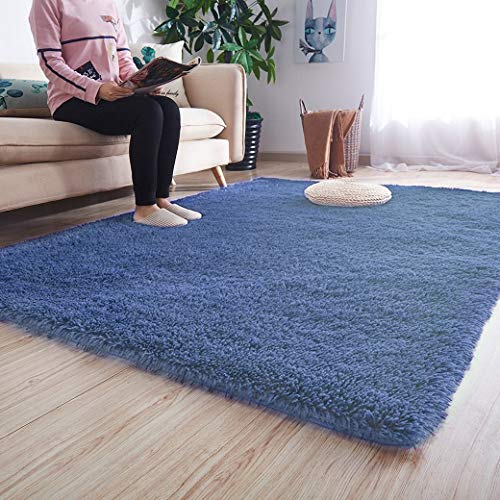 Noahas Luxury Fluffy Rugs Ultra Soft Shag Rug for Bedroom Living Room Kids Room, Child and Girls Shaggy Furry Floor...