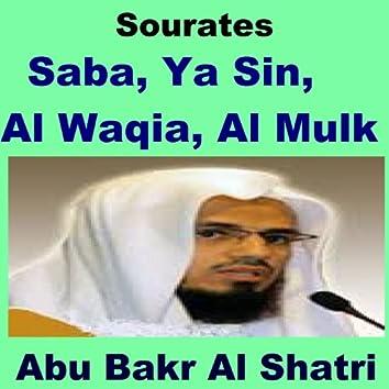 Sourates Saba, Ya Sin, Al Waqia, Al Mulk (Quran - Coran - Islam)